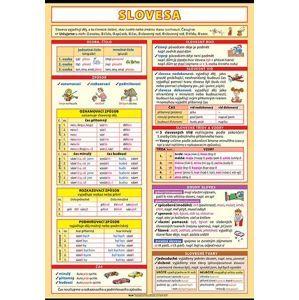 Slovesa - výukový plakát XL