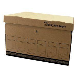 CAESAR OFFICE Archivační krabice úložná Guardian Pegas 470 × 310 × 320 mm