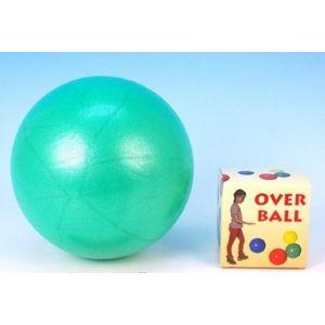 Míč Overball rehabilitační 26 cm max. zatížení 120 kg, mix barev