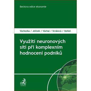 Využití neuronových sítí při komplexním hodnocení podniků - Vochozka, Jelínek, Váchal, Straková, Stehel