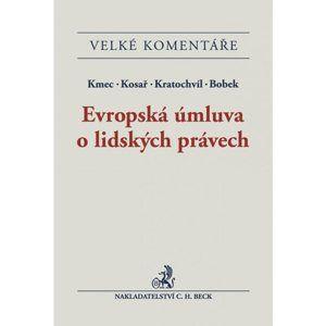 Evropská úmluva o lidských právech - Kmec, Kosař, Kratochvíl, Bobek