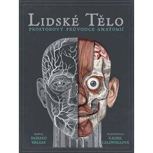 Lidské tělo - prostorová encyklopedie - Richard Walker