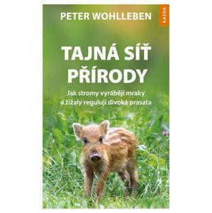 Tajná síť přírody - Jak stromy vyrábějí mraky a žížaly regulují divoká prasata - Wohlleben Peter